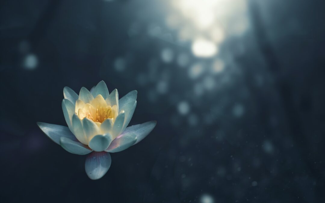 Mindfulness-compassiemeditatie en christendom: gaat dat samen?